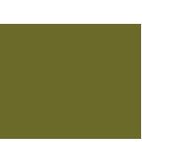 Brede School logo